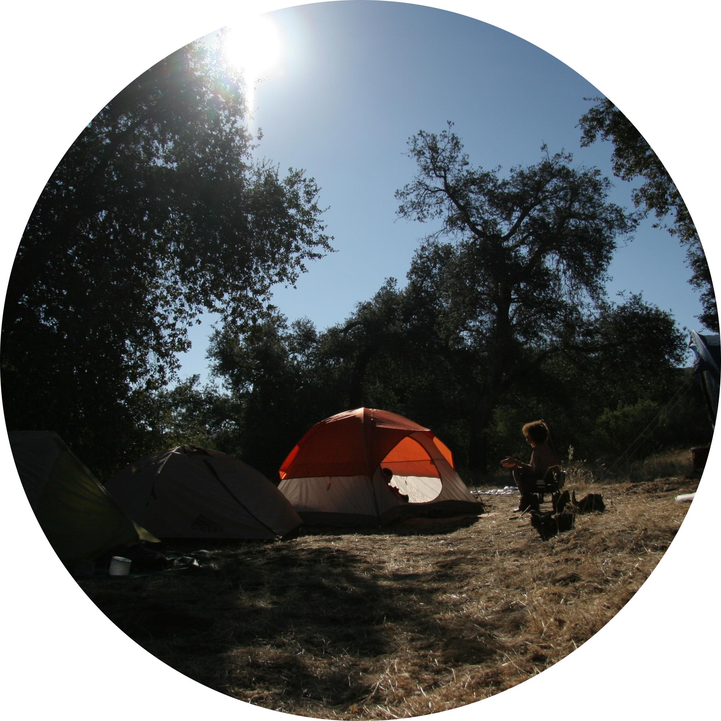camping_medicine_mandala.jpg