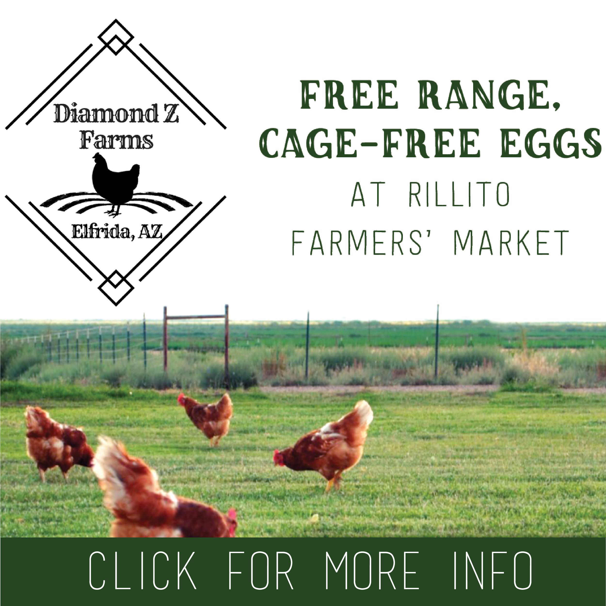 Diamond Z Farms: Gilbert & Dee Ann Zamudio 623-695-0290