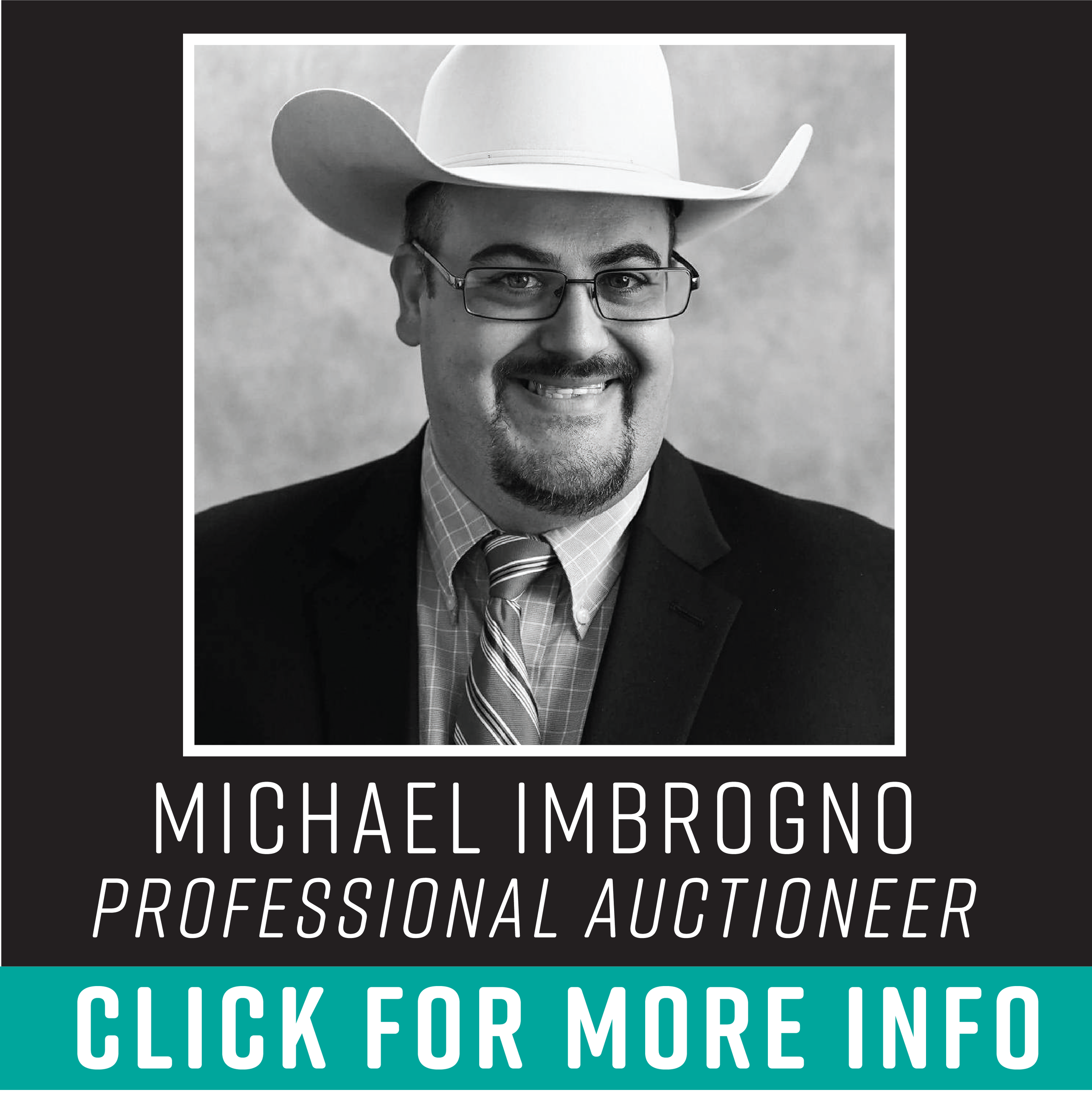 Michael Imbrogno: 290-678-5179