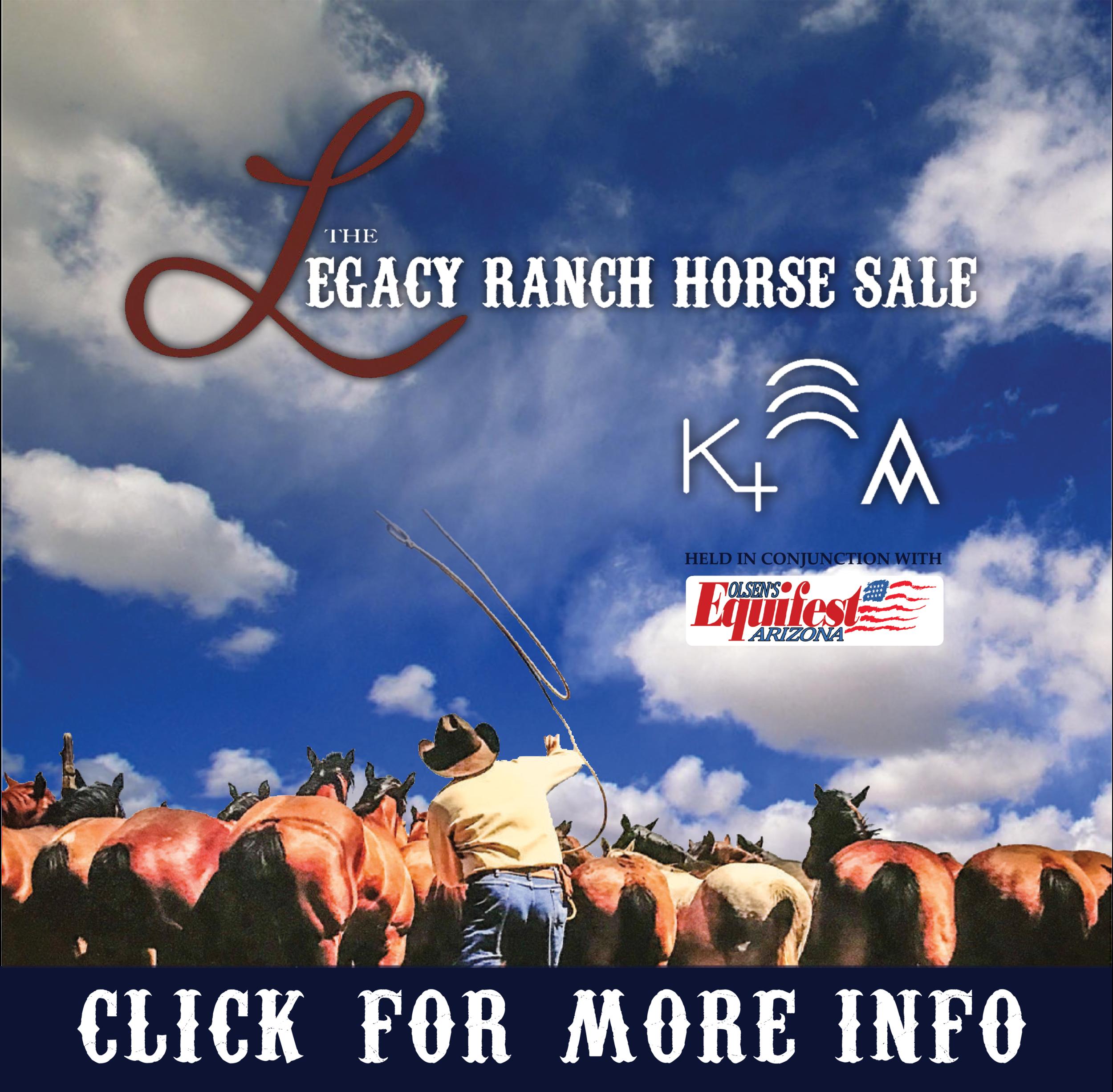 Legacy Horse: 520-360-9524
