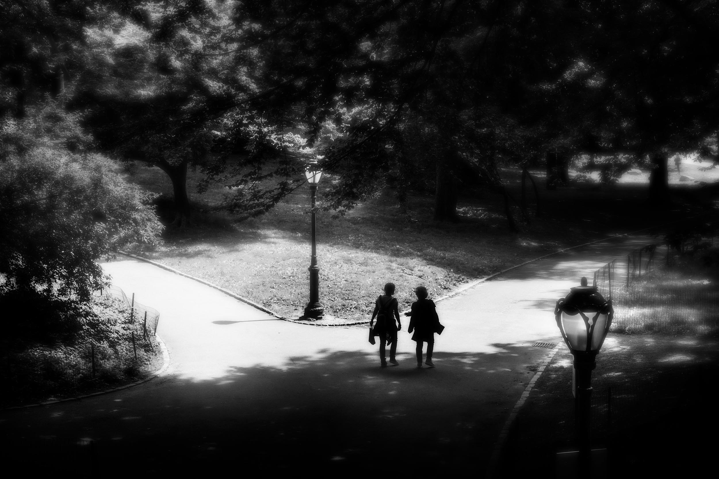 Walkers, Central Park, NYC