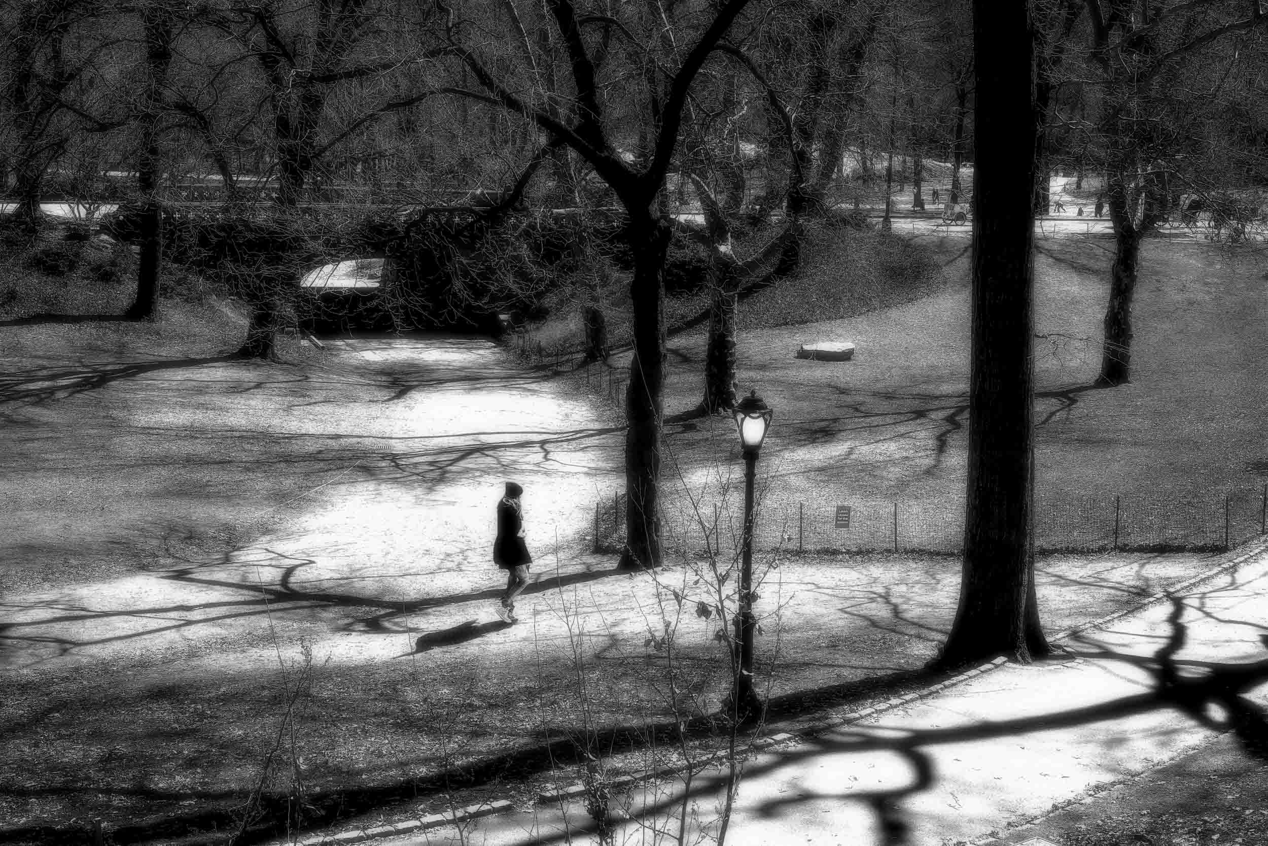 Strolling on a Shaded Path, Central Park, NYC