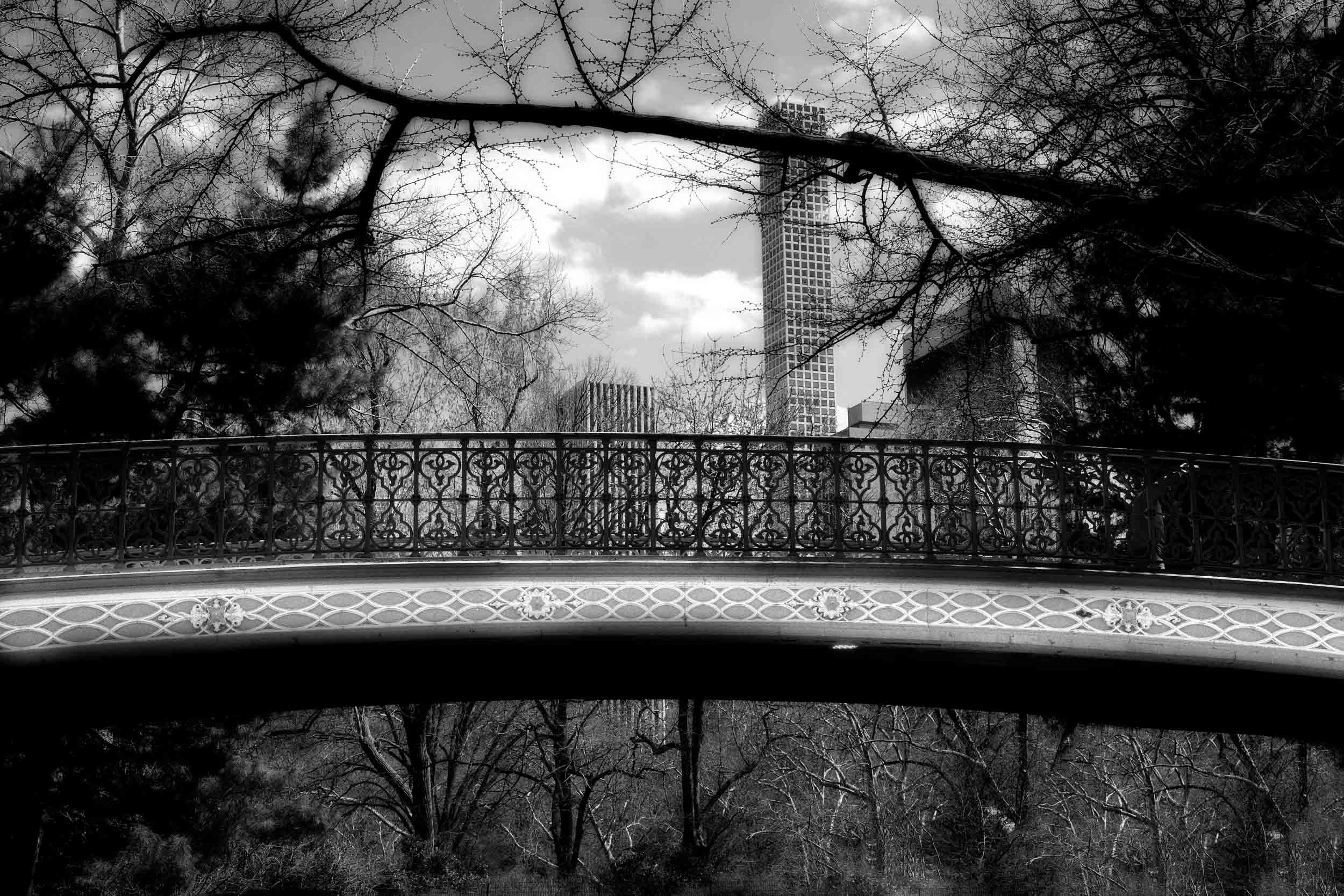Pine Bank Arch, Central Park, NYC