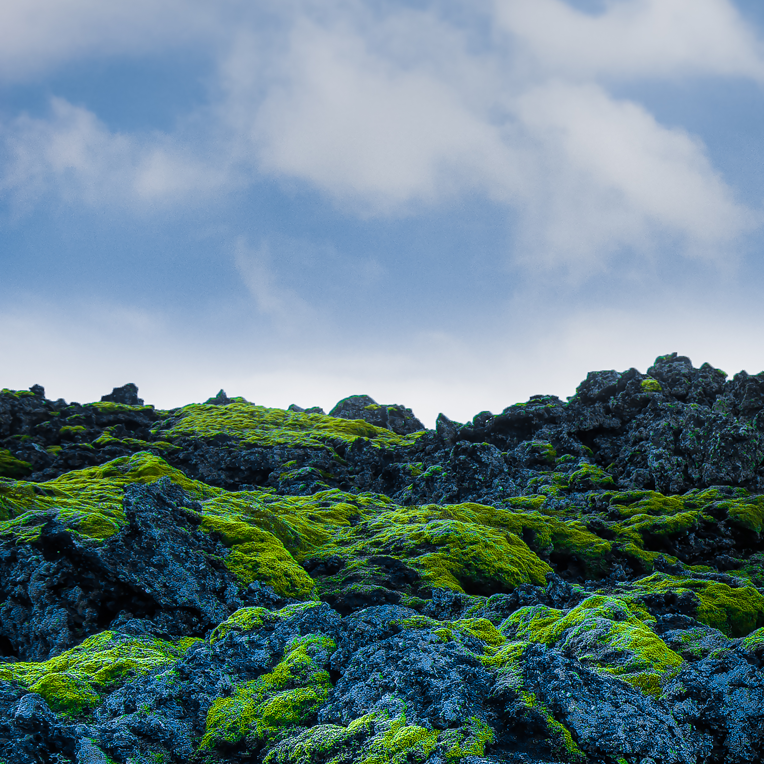Moss and Lava, Iceland