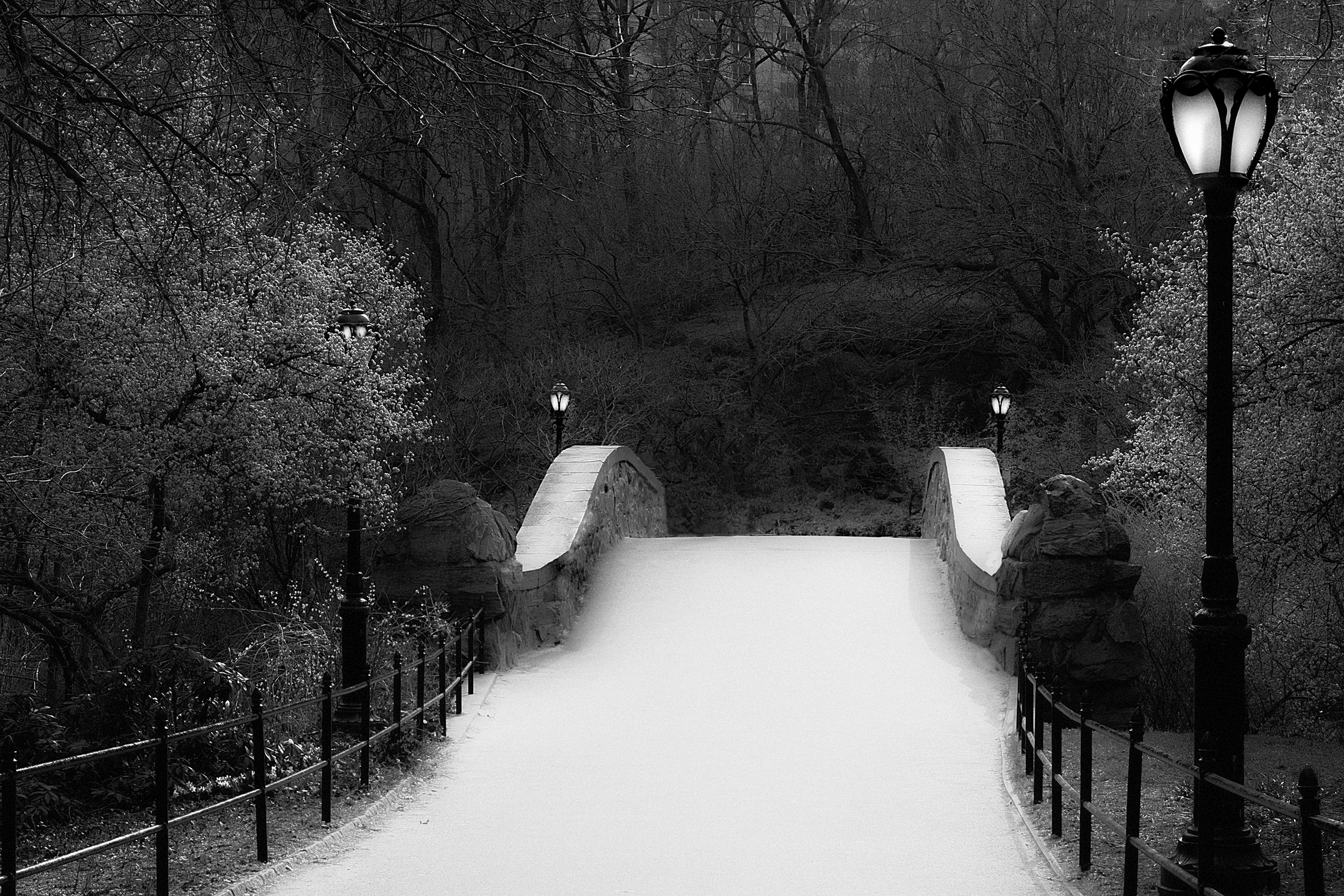 "The Gaptsow Bridge , Central Park, NYC 14""x20"" Edition of 20"