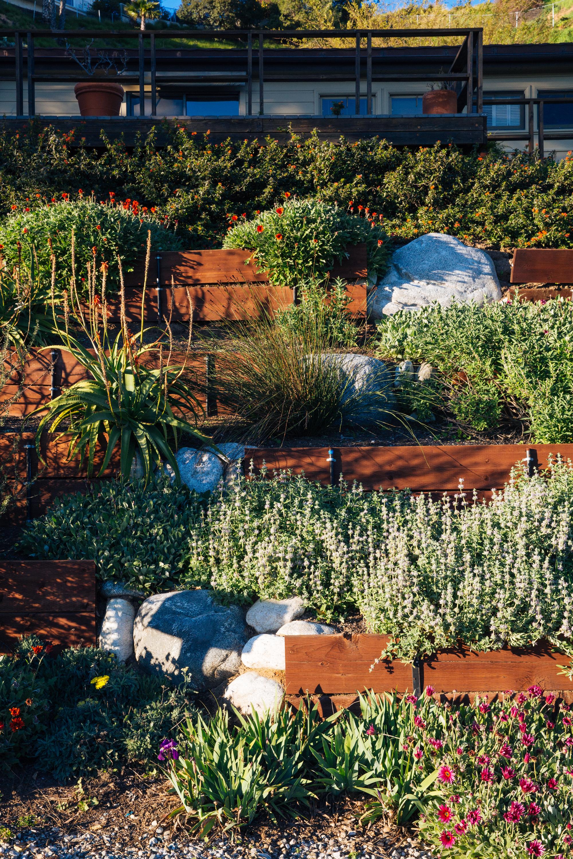 Vertical garden in Altadena