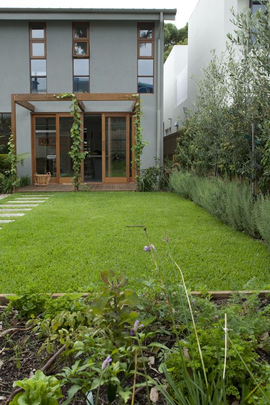veg garden.jpg