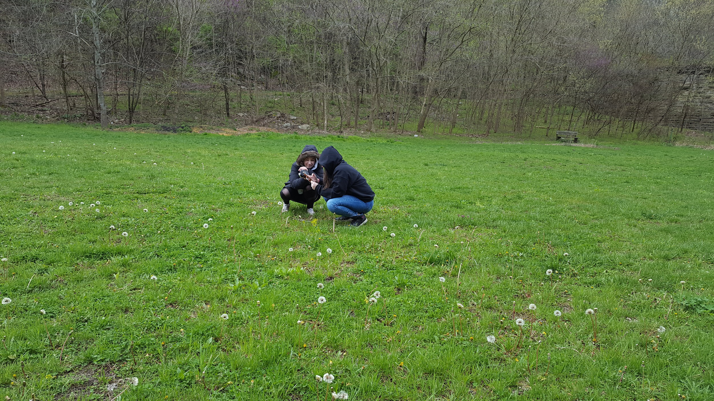 Squatting in a Field.jpg