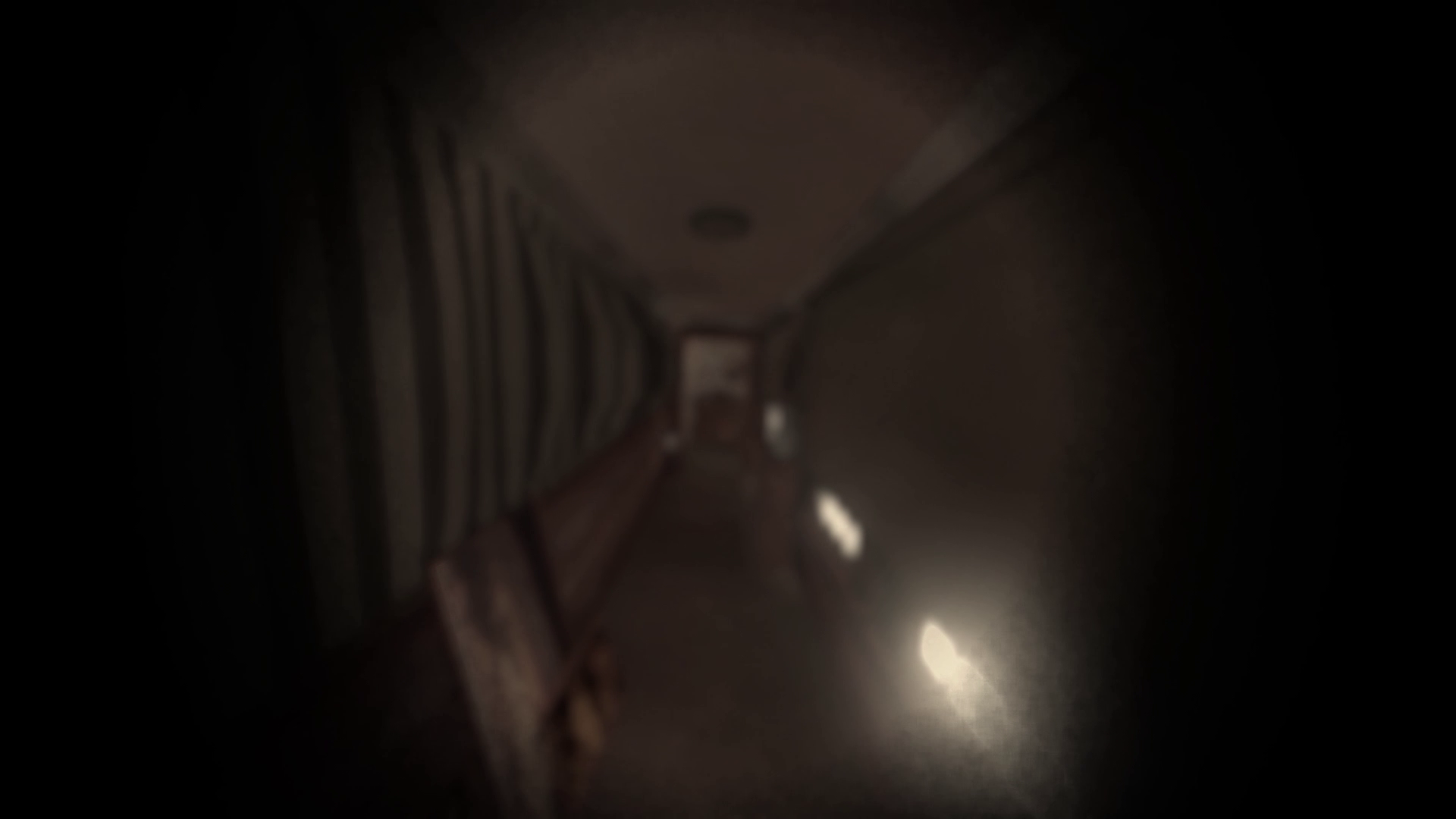 VDE Release Hallway Screenshot Effects On.png