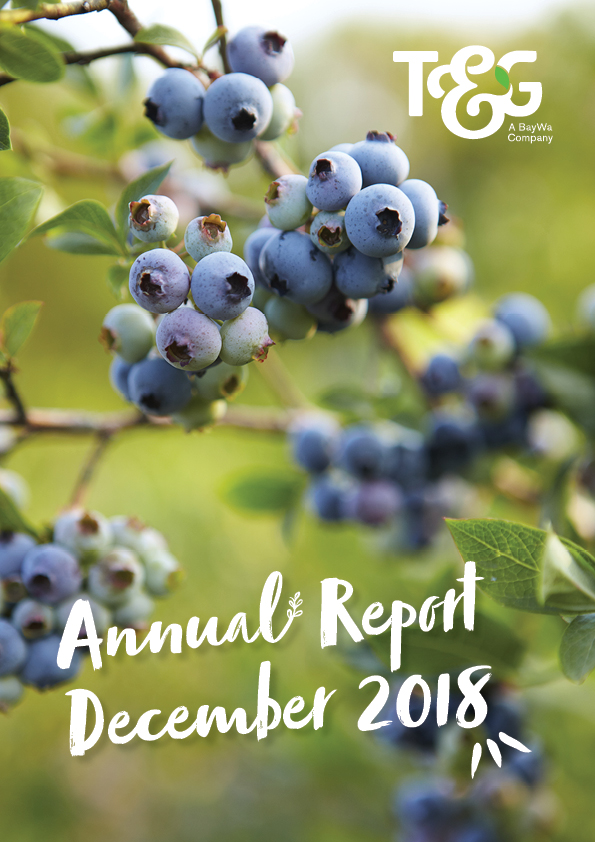 T&G Global Annual Report