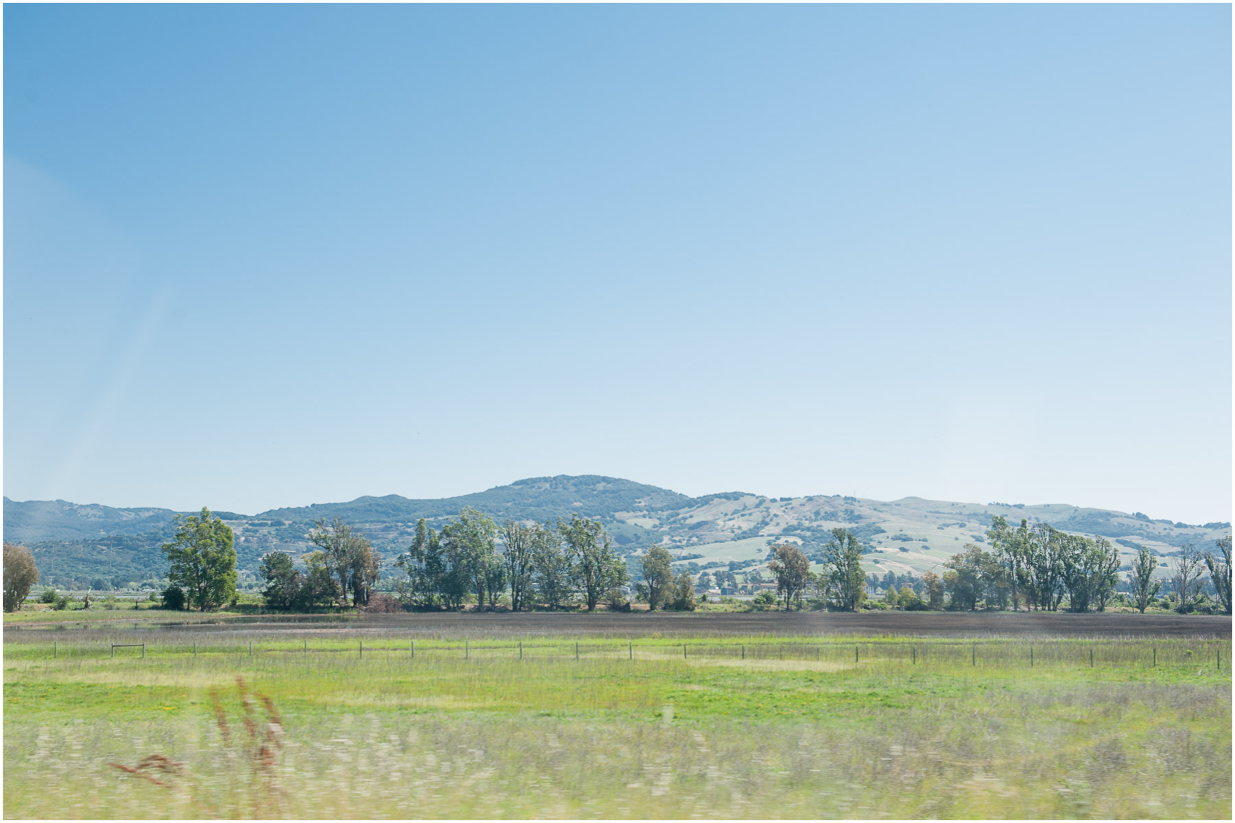 Luna-Vineyards-California-Napa-Valley_1.jpg