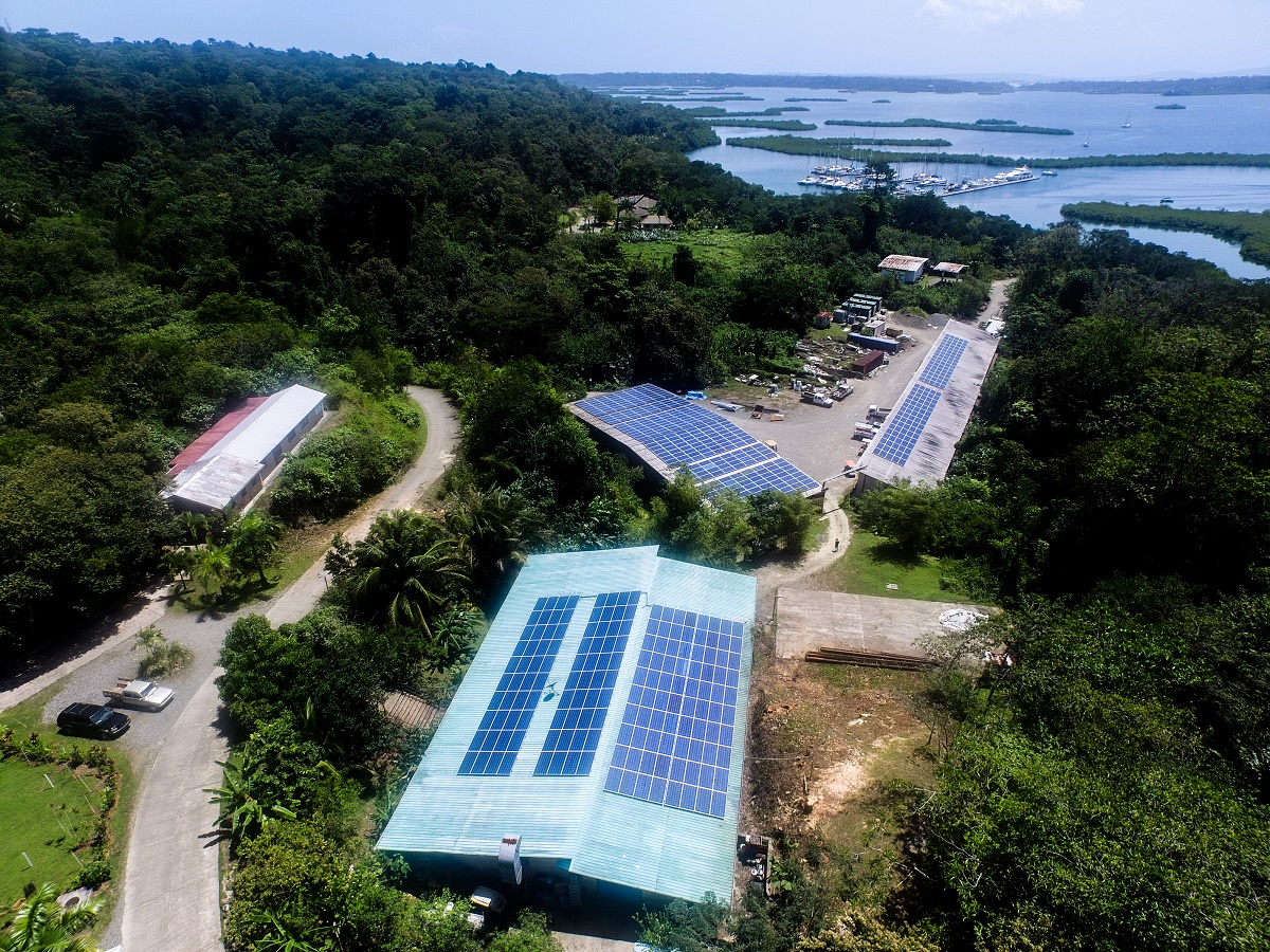 Red Frog Entry and Solar.jpg
