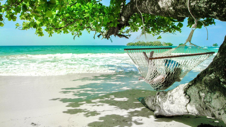 Red Frog Beach Island Resort In Bocas