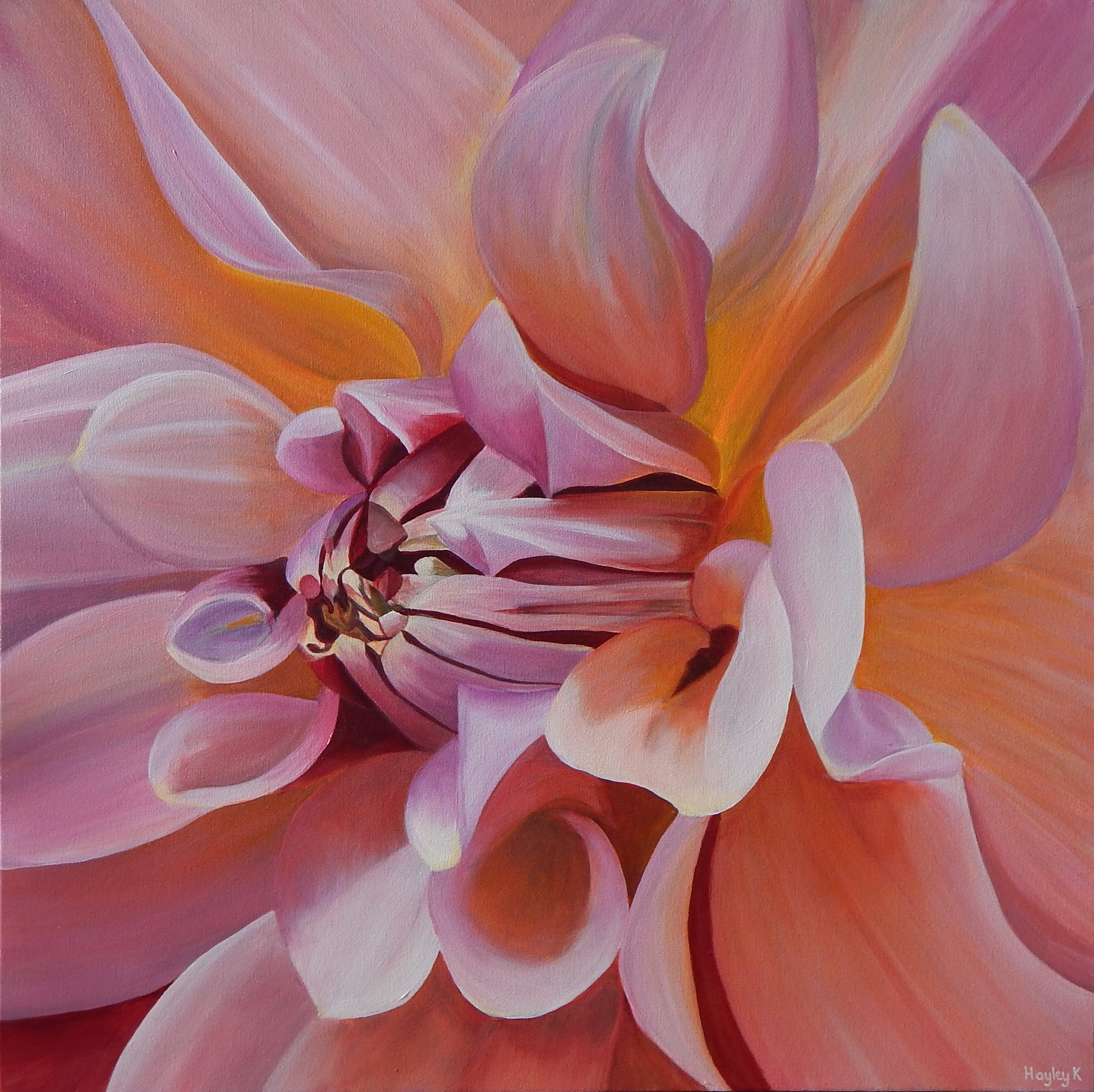 "Delirium 76cm (W) x 76cm (H) $800  I just love dahlias. They make me deliriously happy. ""Be deliriously happy or at least leave yourself open to be"" ~ Bill Parish (Anthony Hopkins) in meet Joe Black."