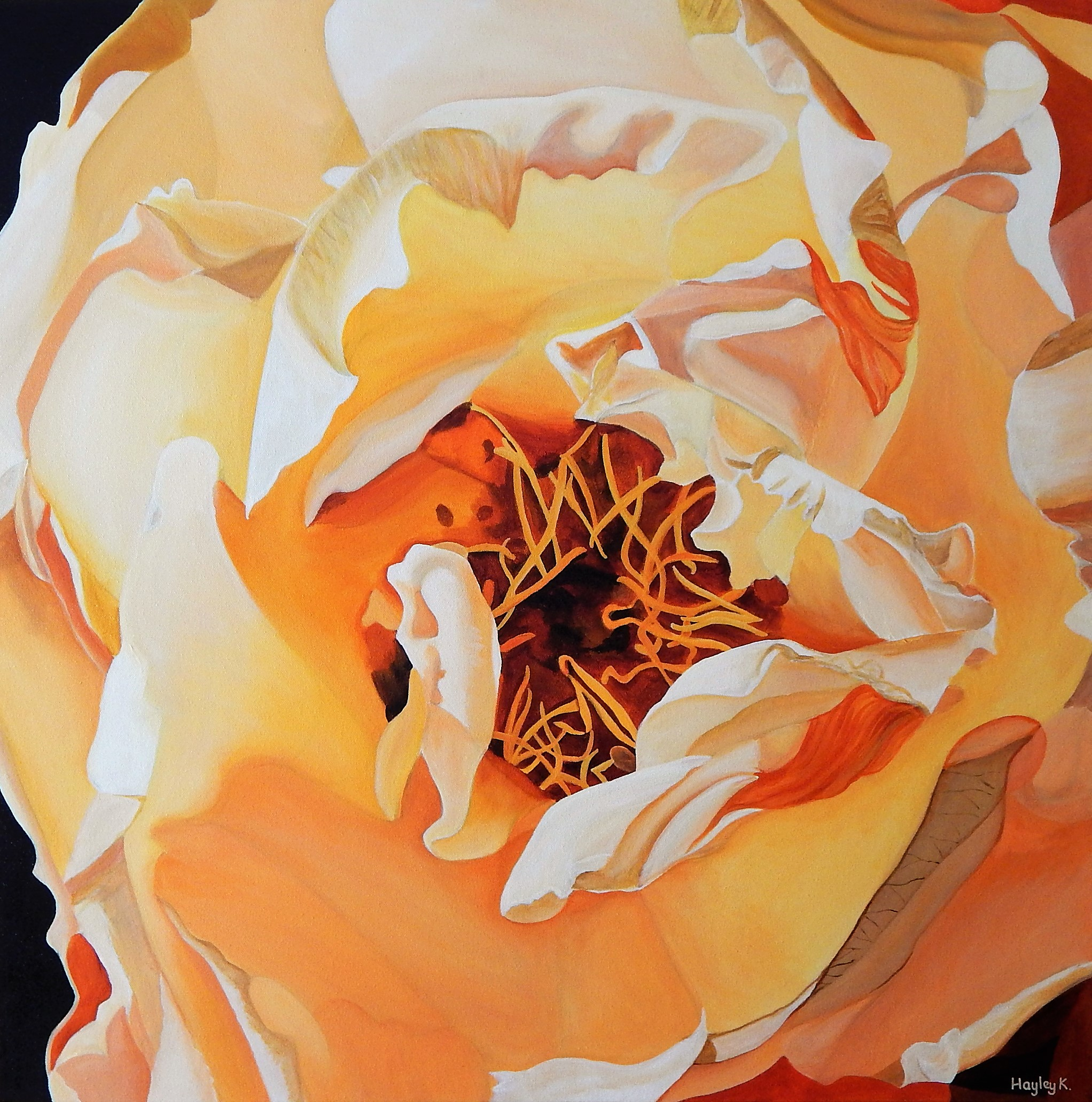 Transcendence 76cm (W) x 76cm (H) $800  I love the ethereal feel of the afternoon sun dancing on the petals of this apricot rose. It has a dreamy quality, like satin sheets glowing in candlelight.