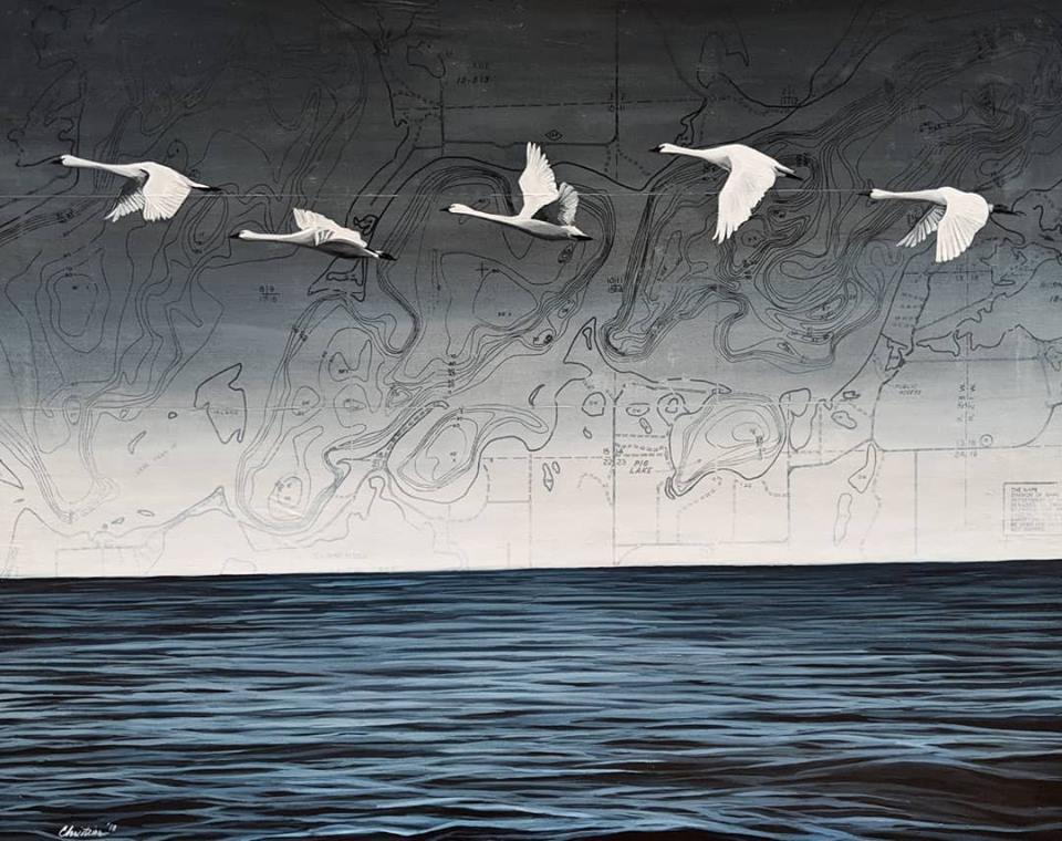 Swans Over Whitefish Lake