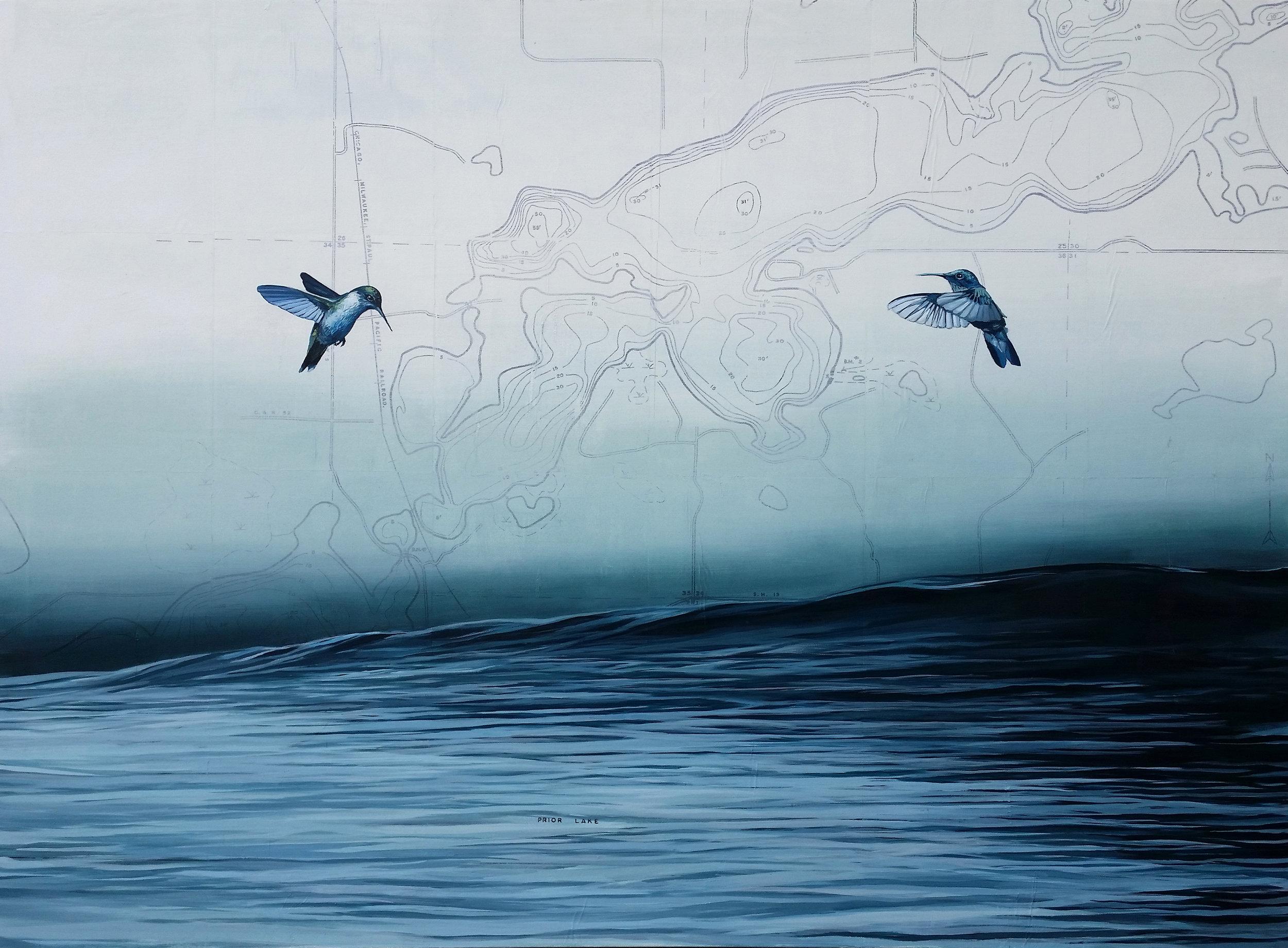 Prior Lake Hummingbirds