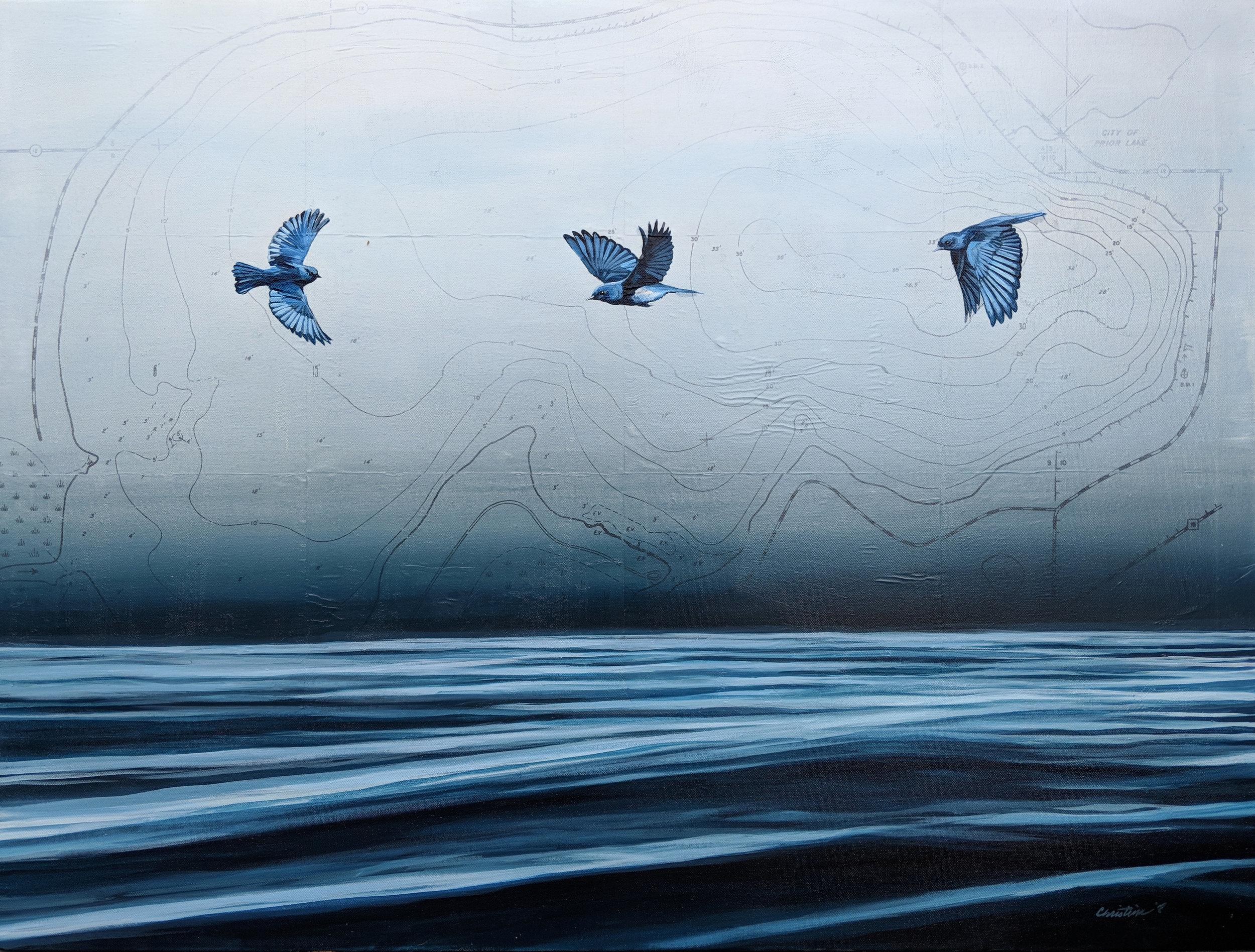 Spring Lake Bluebirds