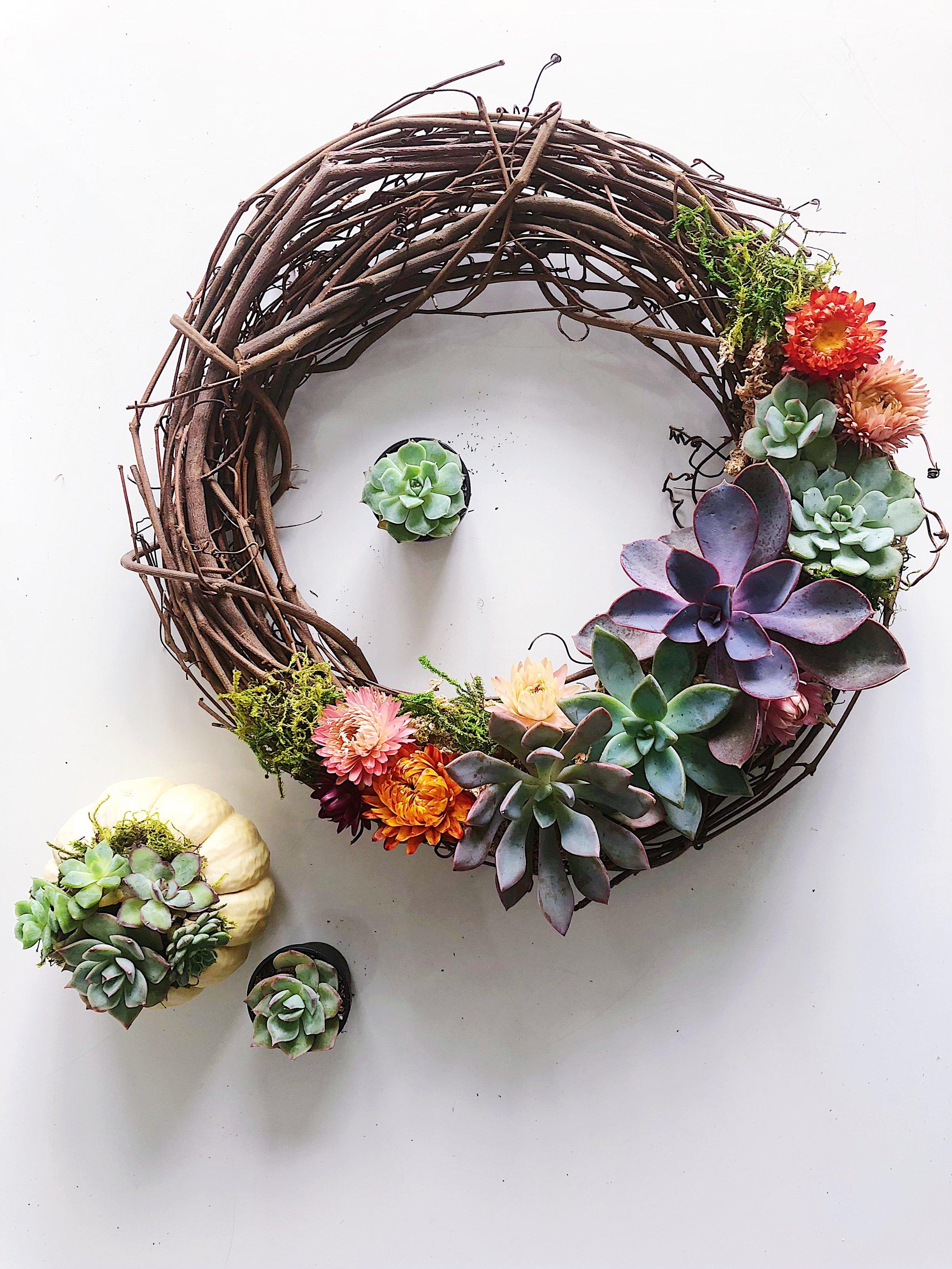 Pine Flora - Living Succulent Wreath.JPG