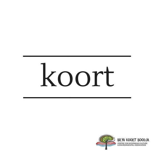 // Learn Nyoongar Language // . Koort - Heart ❤️ .  #BilyaKoortBoodja  #NyoongarCulture  #Environmental  #BKBCentre  #Northam