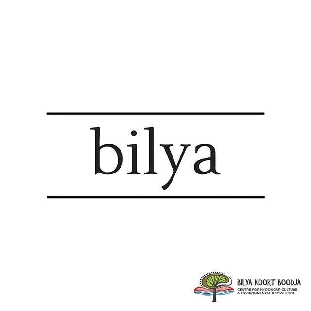 // Learn Nyoongar Language //⠀ .⠀ Bilya - River⠀ . ⠀ The Nyoongar people have a long and strong connection to the river. The river is also a local environmental focus.⠀ .⠀ #BilyaKoortBoodja⠀ #NyoongarCulture⠀ #Environmental⠀ #BKBCentre⠀ #Northam