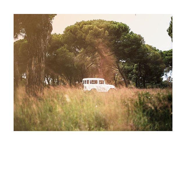 📷 @julien_scheubel . . . . #getoutanddrive #landcruiser#lifestyle#outdoors#timelessgarage#leica