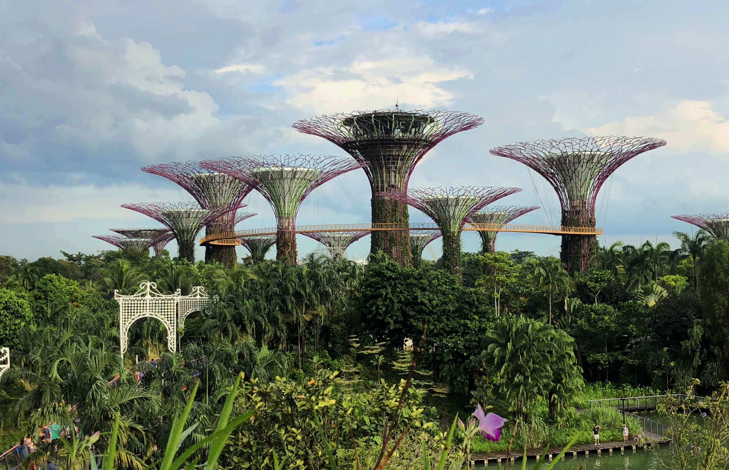 GARDENS BY THE BAY Tour - Suitable for all nature lovers, stand in awe of the myriad of flowers and plants at Singapore's Gardens By The Bay. Visit the tree that Prince William and Princess Katherine planted in 2012 and explore the various conservatories.