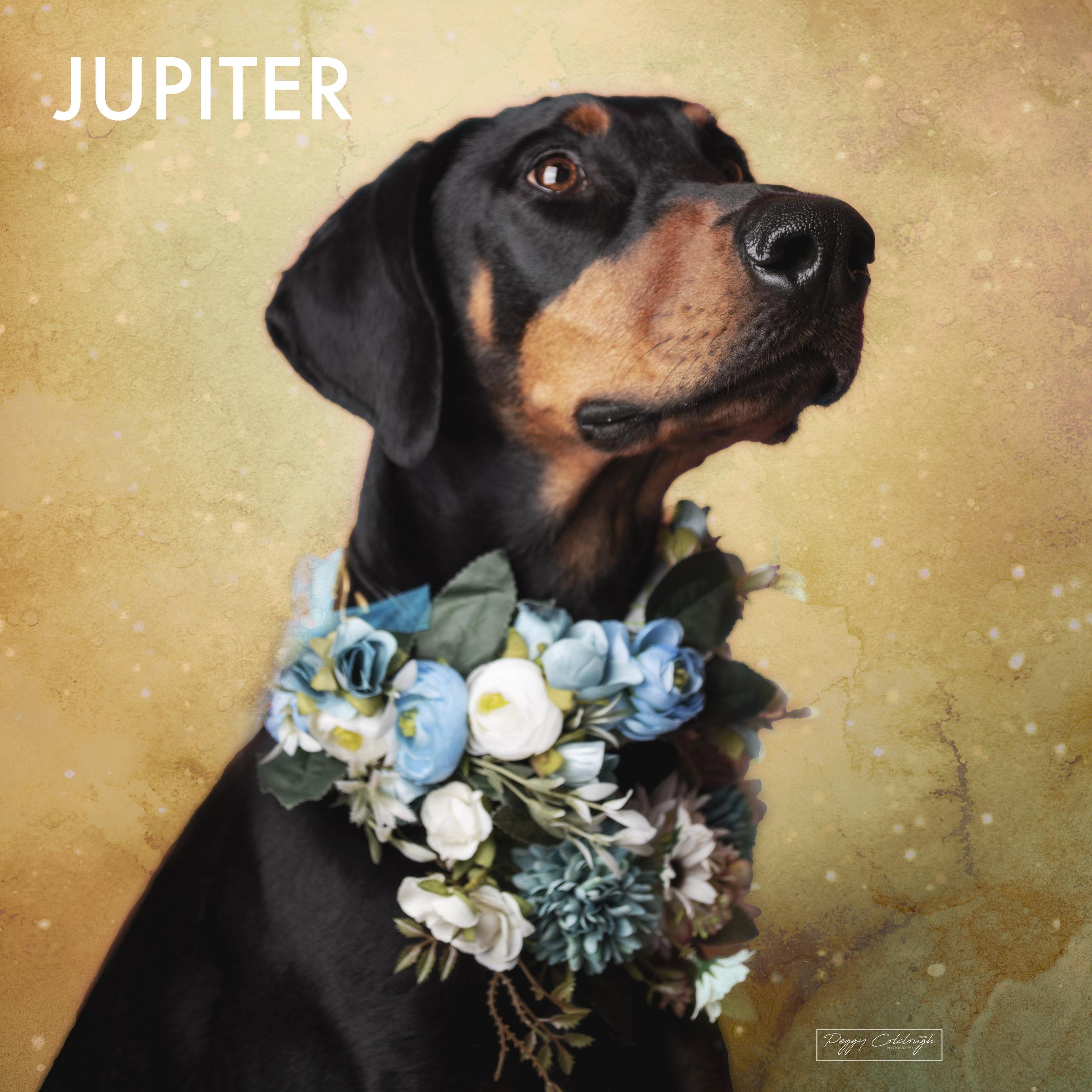 34. JUPITER.jpg