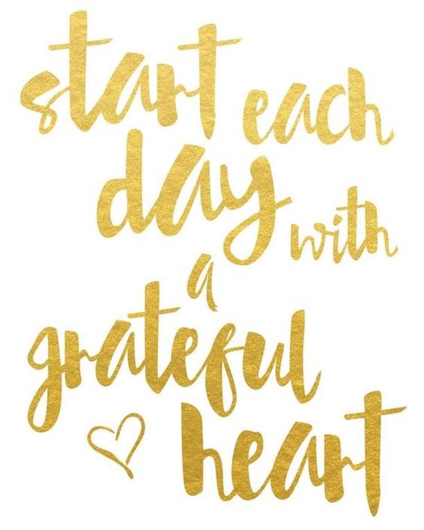 Gratitude is so important 💛✨ #happyfriday #wisewords #gratitude #peace #love #musekingsroad