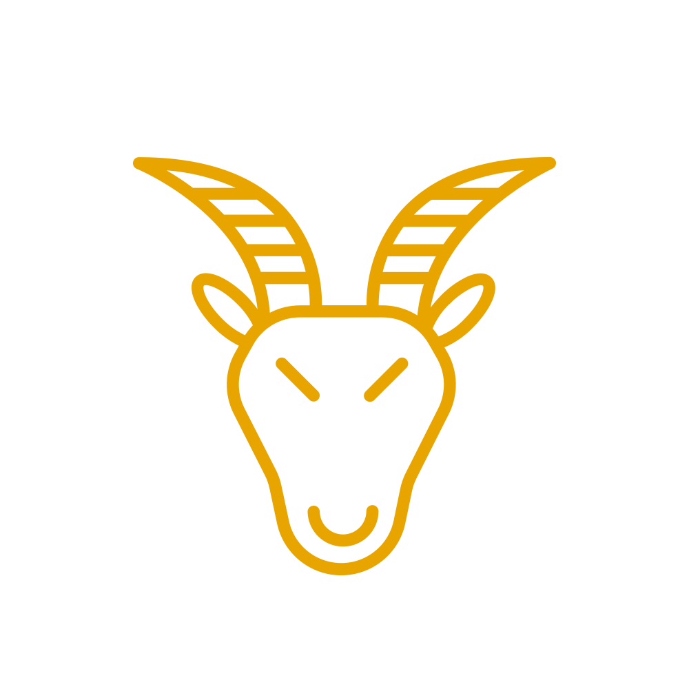 CAPRICORN  - Ambition is revving for you and a personal project could speed up this month. But remember to play by the rules!