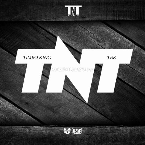 TNT-Tek.jpg