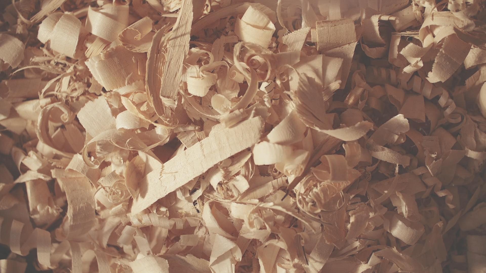 Newbery - The Craft of Bat Making -