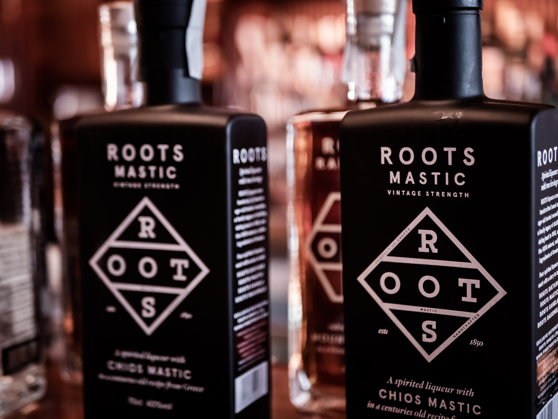 roots (69).jpg