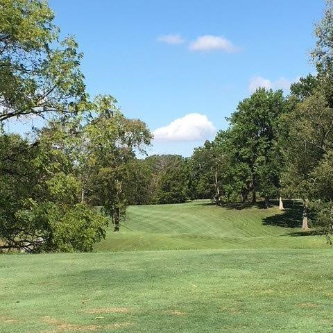 Meshingomesia_Golf-Outing_Form_3.30.18.jpg