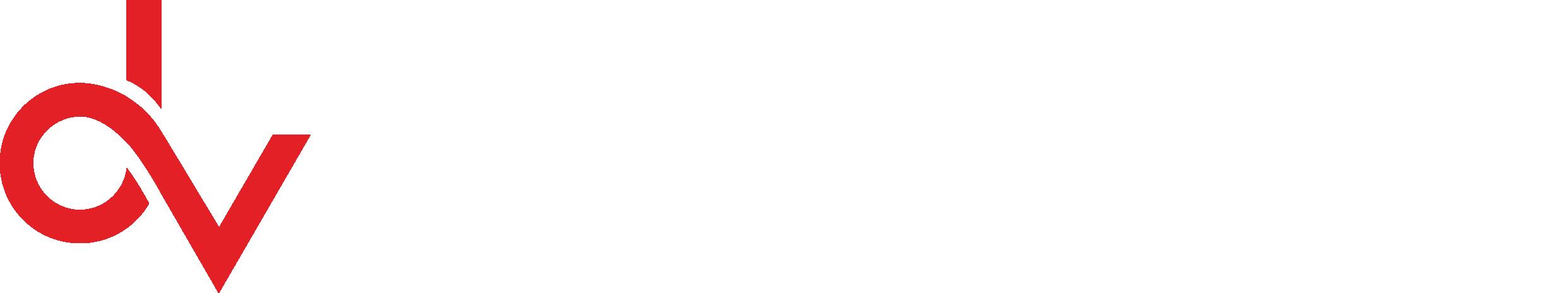 Datavision Logo wht.png