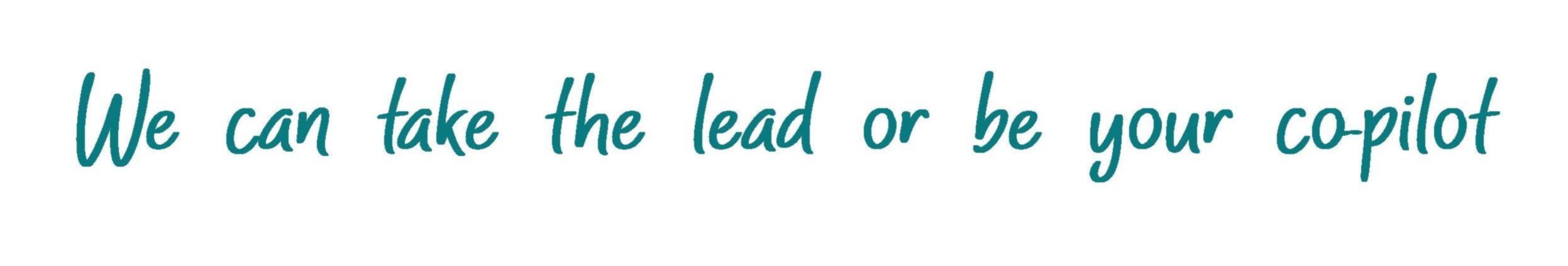 Lead or Co pilot.jpg
