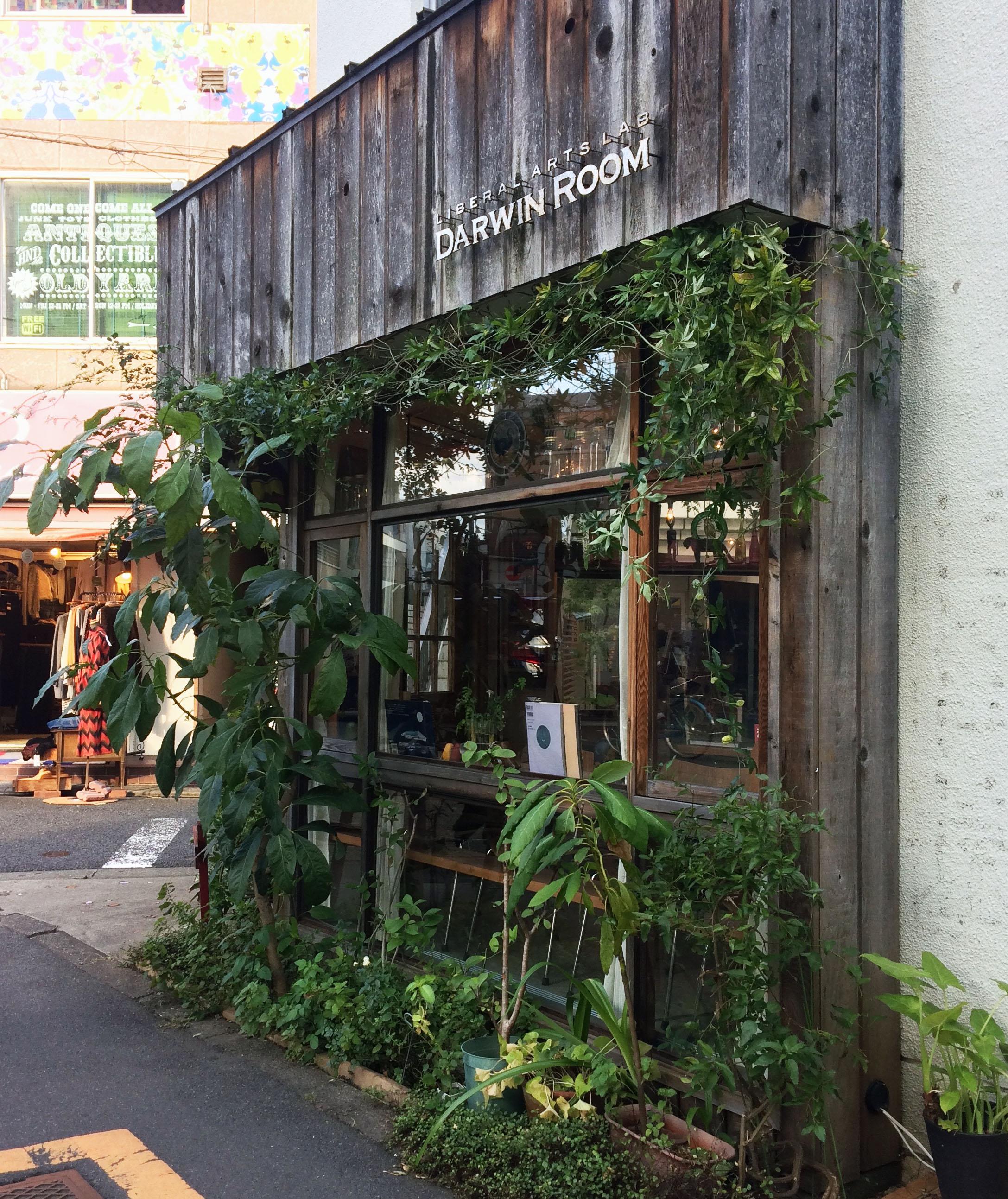 The Darwin Rooms - Tokyo