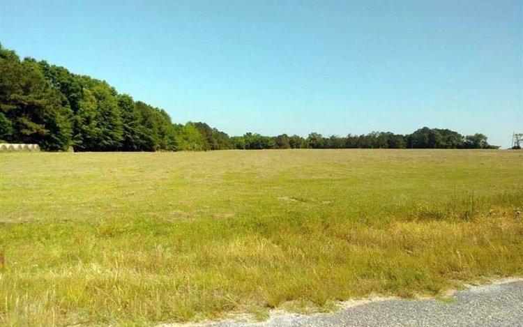 61.34 acres sold.jpg
