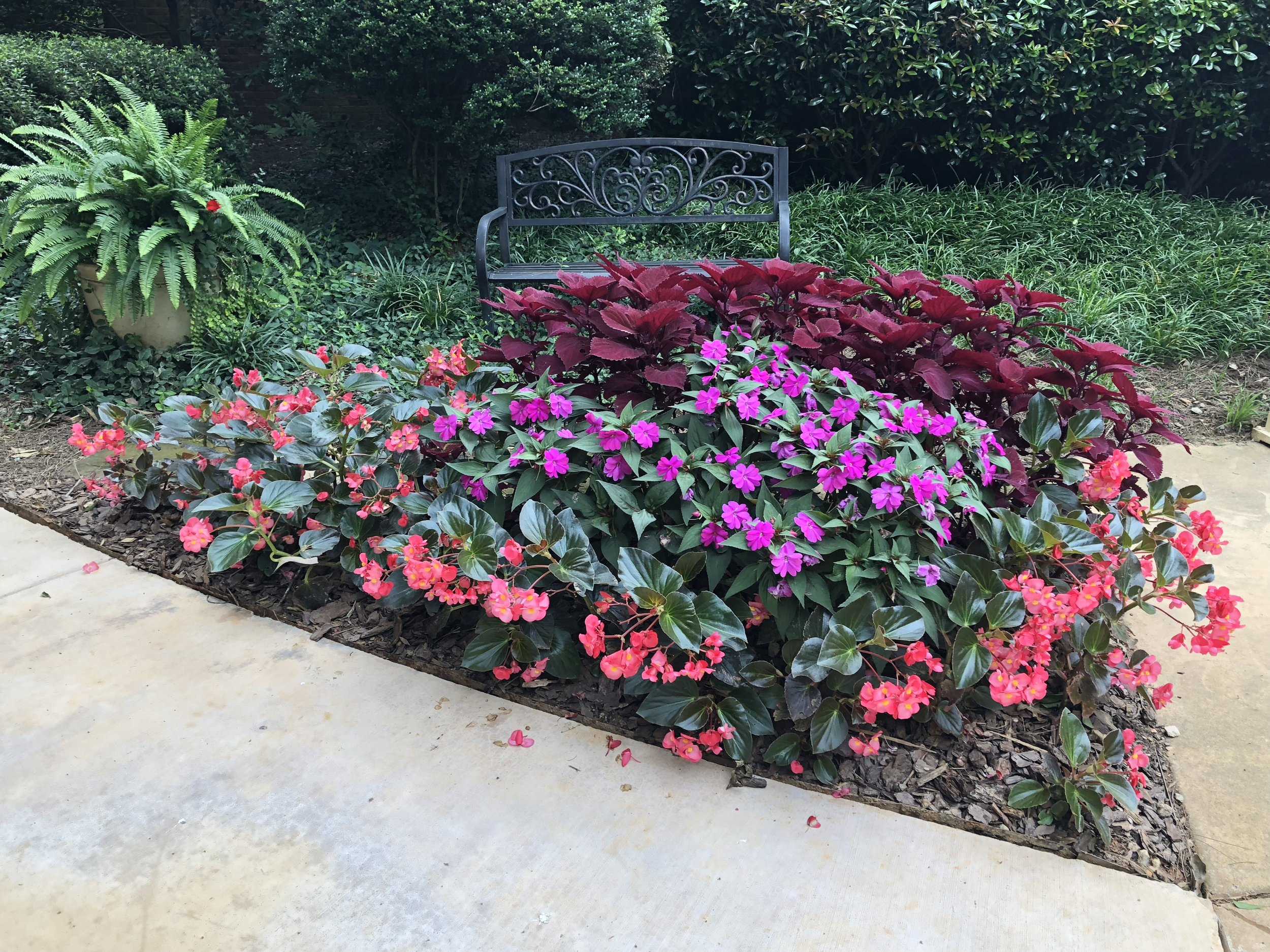 "- ""Our experience with the Corners Industries team has been nothing less than outstanding. The weekly service leaves our yard immaculate. Their team truly goes the extra mile each week. The flowers they planted in the spring are thriving and absolutely gorgeous. The team itself is a joy interact with and we could not be happier with service.""- Shelley Lloyd"