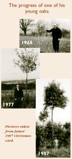 james-blewitt-young-oaks.jpg