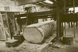 Still rocking on ... the 120 year old horizontal reciprocating saw at Powis Castle Estate Sawmill