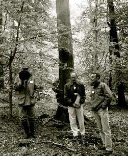 Miles Barne (with loudspeaker), Dr Peter Savill and Gabriel Hemery at one of the oak trees selected for seed for the BIHIP oak trials. (Photo by D. Moodley, HRI)