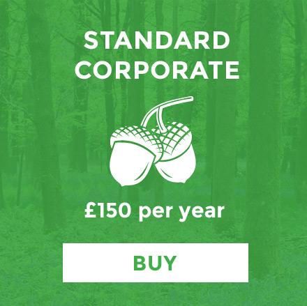 standard-corporate.jpg