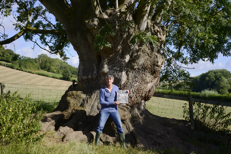 Archie-Miles-explores-the-sheer-beauty-of-the-ash-tree.jpg