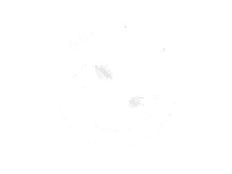 GGJ00-White_334x250.png