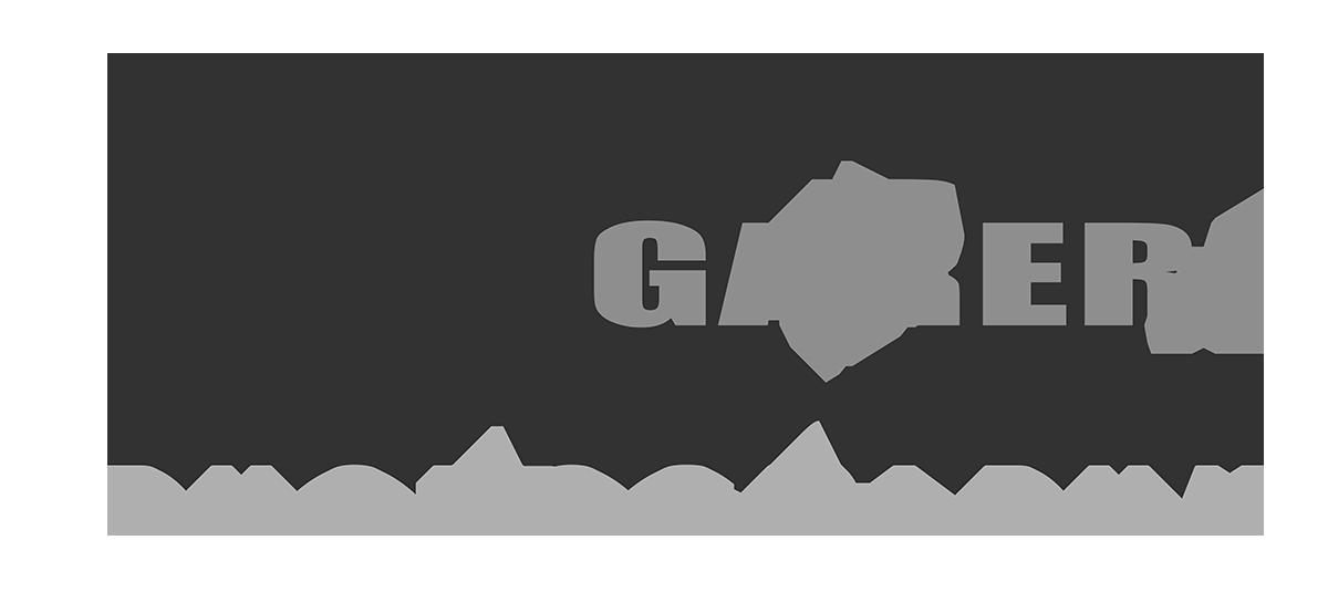 Liz_Logo.png
