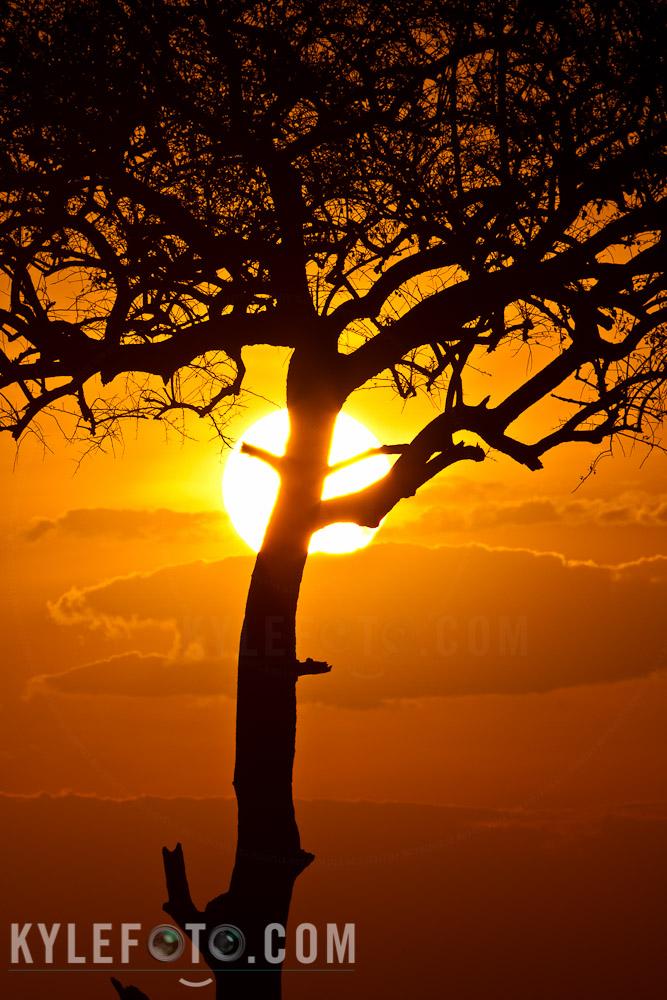 Africa-2011-2183.jpg