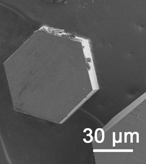 Scanning electron micrograph of a typical hexagonal l-cystine crystal