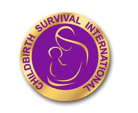 CSI Logo - Final.jpg