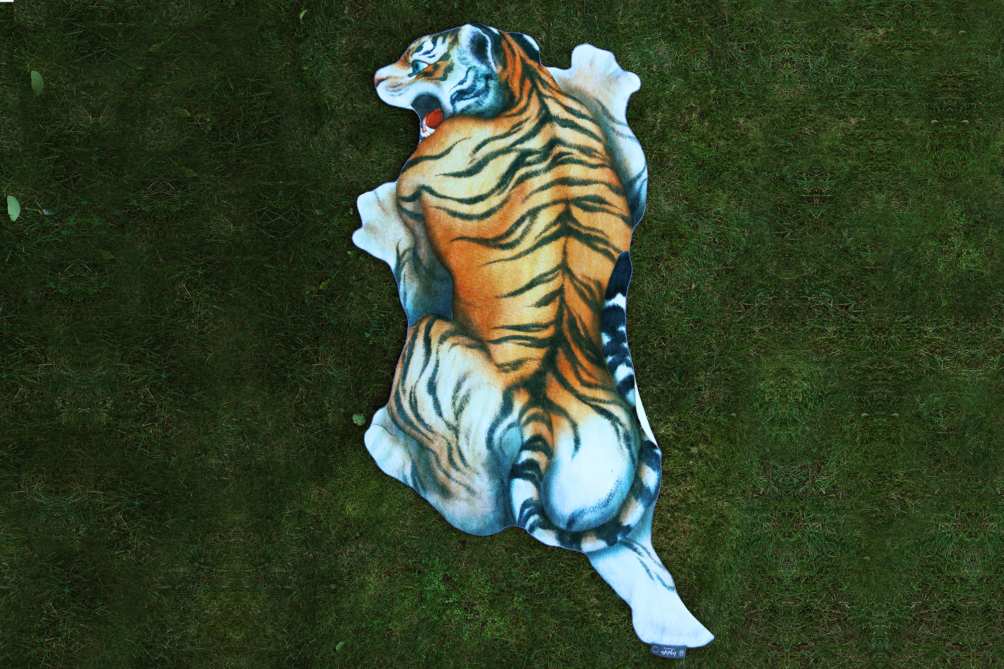 TigerGrass.jpg